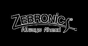 zebronics Recruitment