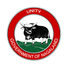 Government Jobs in Nagaland 2018