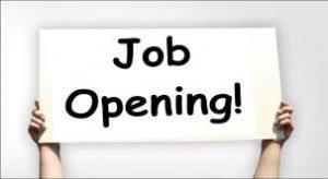RGAVP Consultant Recruitment